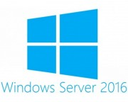 - Windows Server 2016 Standard 64bit English DSP OEI DVD 16 Core (P73-07113)